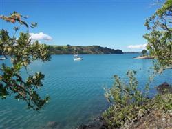 Les baies de Rangitoto en Nouvelle-Zélande