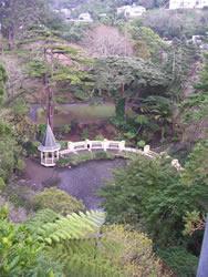 La mare au canard du Botanic Garden