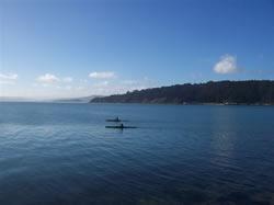 Du Canoë dans la baie de Wellington