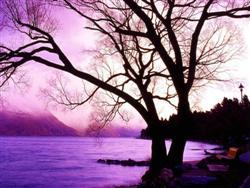 Le lac Wakatipu