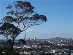Le Mont Albert d'Auckland en Nouvelle-Zélande