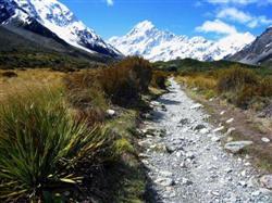 Le Mt Cook