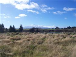 les plaines du Tongariro National Park