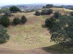 One tree hill à Auckland en Nouvelle-Zélande