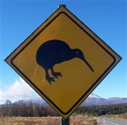 Le panneau du kiwi en Nouvelle-Zélande