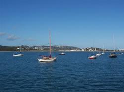 Les bateaux de baie près de l'aéroport de Wellington