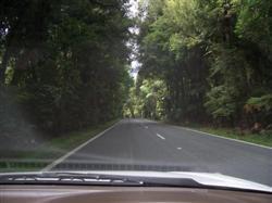 On roule à gauche en Nouvelle-Zélande