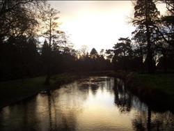 L'Avon rivière à Christchurch