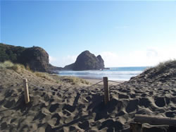 Le sable noir de Piha Beach