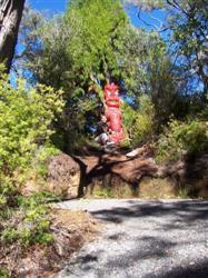 Une statue maori à Rotorua