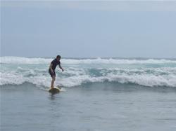 Surf à Piha Beach en Nouvelle-Zélande