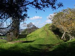 Le mont Albert à Auckland
