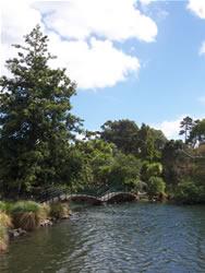 Le western spring park à Auckland